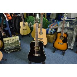 12 strunná kytara Ashton D25/12 BK PPP