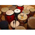 Bicí  nástroje a perkuse